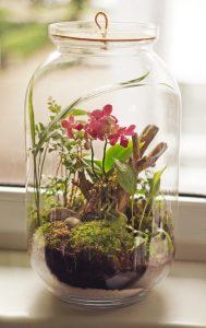 Różowy Phanelopsis w minimalistycznej kompozycji